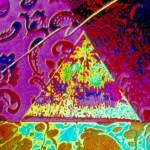 Lightspeed llustration - 1986